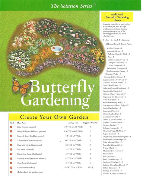How To Make A Butterfly Garden by Butterfly Gardening A List Of Plants That Will Attract
