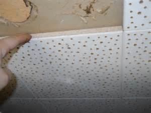 asbestos sterling home inspections