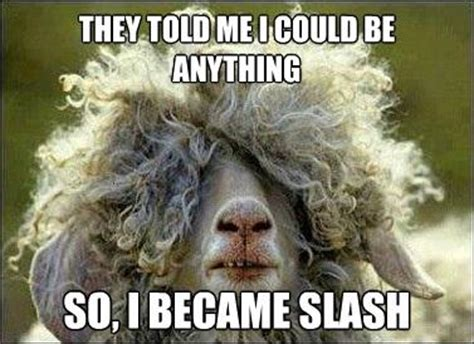 Slash Meme - slash sheep they told me i could be anything i wanted