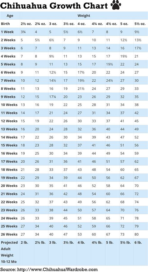 weight predictor chihuahua puppy growth chart