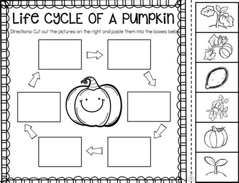 coloring pages of life cycle of pumpkin 1000 images about pre k kinder on pinterest sight