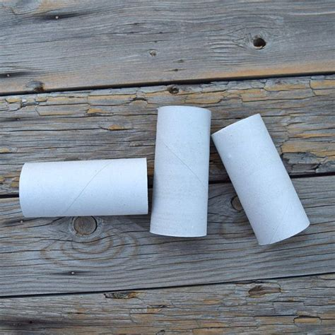 Empty Toilet Paper Roll Crafts - 78 empty toilet paper rolls clean craft supplies garden