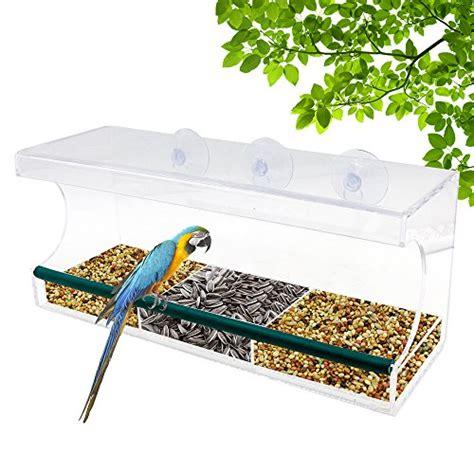 Durable Bird Feeders Top 15 Best Bird Houses