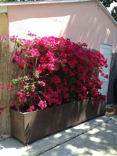 Custom Flower 12 outstanding diy planter box plans designs and ideas