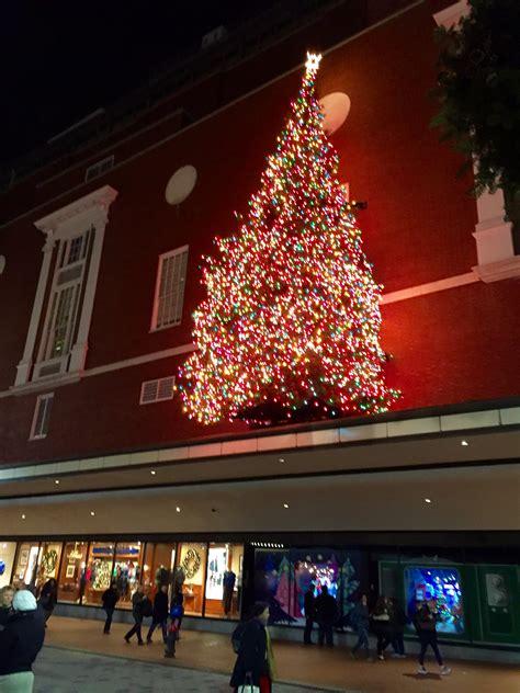 100 where to buy a christmas tree in boston boston