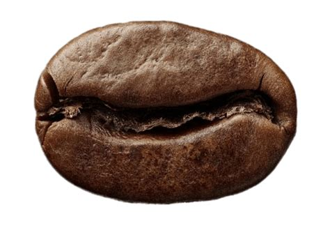 Kopi Coffee Bean single roasted coffee bean transparent png stickpng