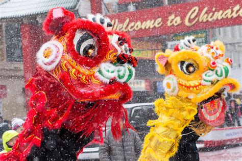 new year 2016 chinatown parade chinatown new year parade 2016 medill reports