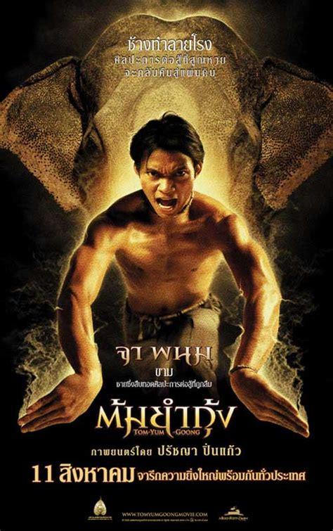 film ong bak the protector from ong bak to tom yum goong decoding galvindecoding galvin