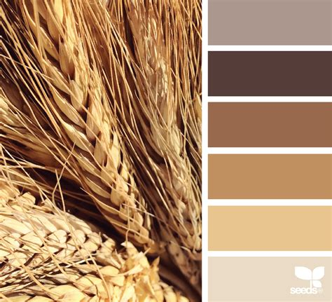 wheat color wheat tones design seeds