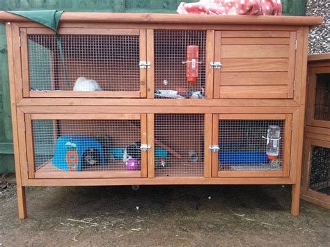 Hutches For Guinea Pigs Guinea Pig Hutch Tour August 2013 Youtube