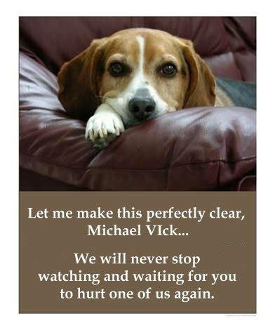 michael vick dogs michael vick murderer my way