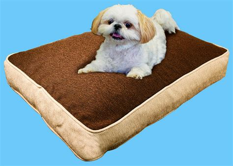 my pillow pet bed friday freebie win your dog a bed covered in hardy