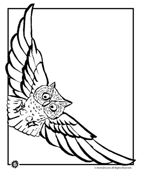 owl wings coloring page owl coloring pages flying owl coloring page animal jr