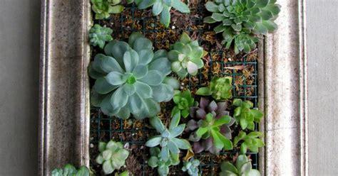 vertical succulent planter vertical succulent planter confessions of a secret crafter