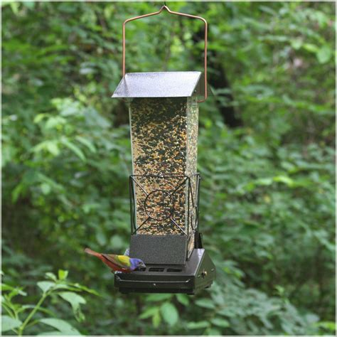 top flight fortress squirrel proof bird feeder bird