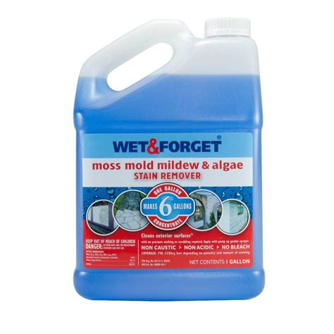 wet forget 1 gal moss mold mildew and algae stain