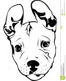 Pit Bull Puppy Stock Images  Image 13155444 sketch template