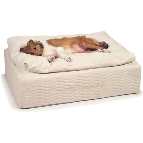 dog orthopedic bed sss petcare pillow top coil spring bed orthopedic dog