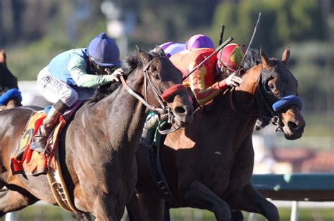 IN A THRILLING FINISH, FAVORED HOPPERTUNITY BEATS