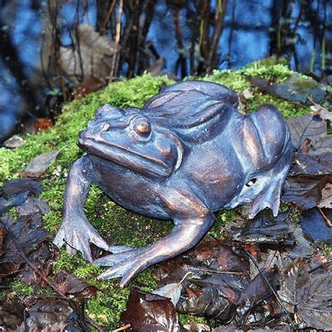 Garden Frogs by 1000 Images About Garden Frogs On Gardens