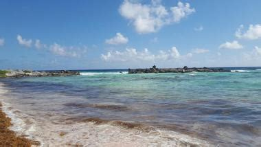 mirador near me 25 best things to do in cozumel