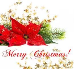 Christmas food christmas presents christmas tree christmas vacation