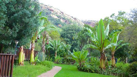 Walter Sisulu Botanical Gardens Walter Sisulu National Botanical Garden In Johannesburg