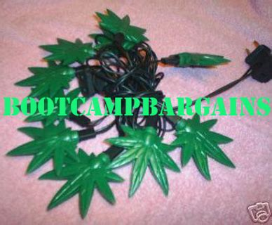 top 28 pot leaf christmas lights poinsettia stock