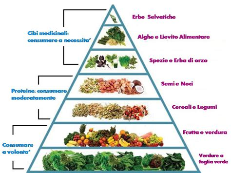 piramide alimentare francese la biofisica alimentare the truthseeker s journal