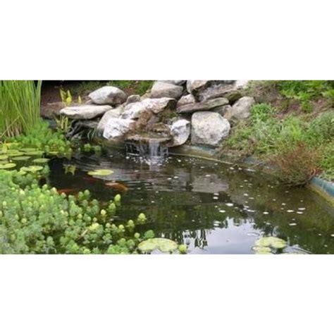 Exceptionnel Bassin De Jardin Hors Sol #2: un-bassin-d-ornement-pour-votre-jardin-830-600-600-F.jpg