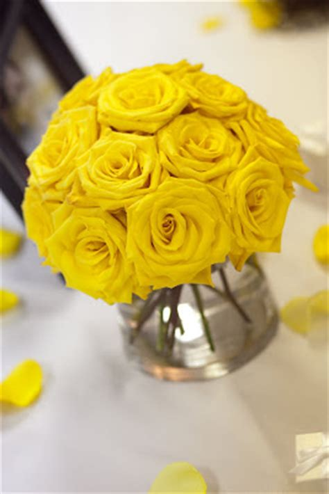 themes yellow rose bloom 47
