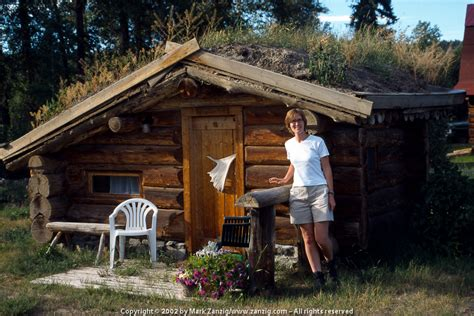 Small Log Home Kits Canada Can You See Yourself Living In One Of These 7 Tiny Cabins