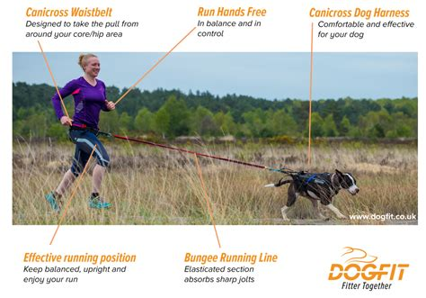 running with your running with your why use canicross equipment