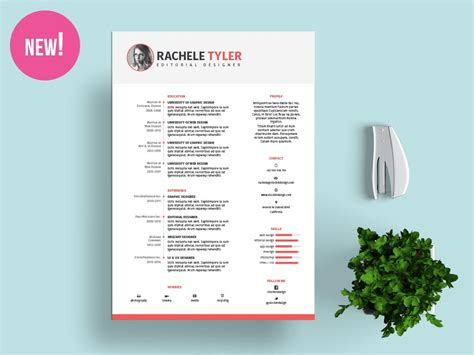 Free Indesign Resume Template by Free Indesign Resume Template Stockindesign