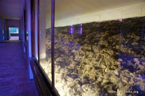 auschwitz rooms exhibits gallery auschwitz birkenau