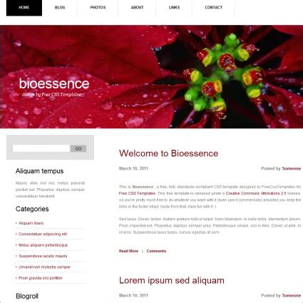 biography website templates free download bioessence free website templates in css html js format