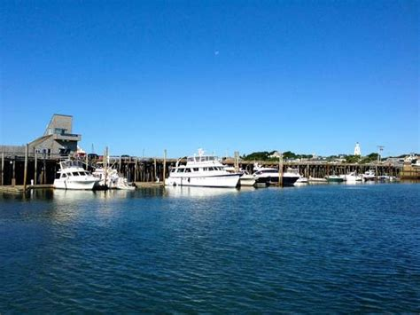what to see in cape cod things to do in cape cod visit best attractions in