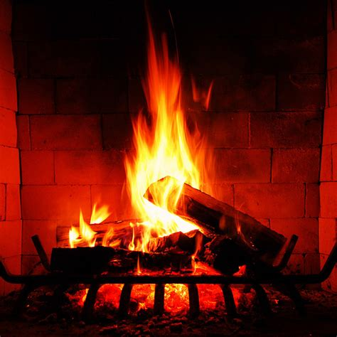 Firewood Fireplace by How To Choose The Best Firewood For Your Needs Firewood