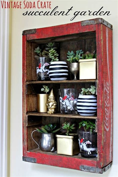 12 ways to repurpose an old soda crate dukes and duchesses crates sodas and succulents garden on pinterest