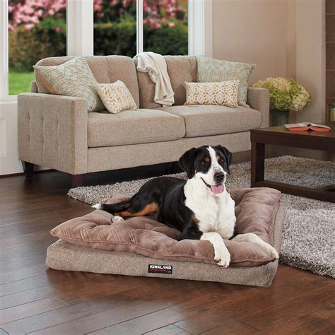 dog bed costco kirkland signature dog sofa bed hereo sofa