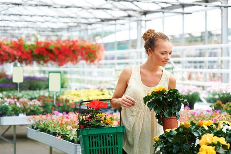 Buy Flowers by 13 Things Your Florist Won T Tell You Reader S Digest
