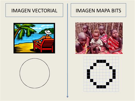 tipos de imagenes vectoriales y mapas de bits illustrator y la imagen vectorial curso profesional