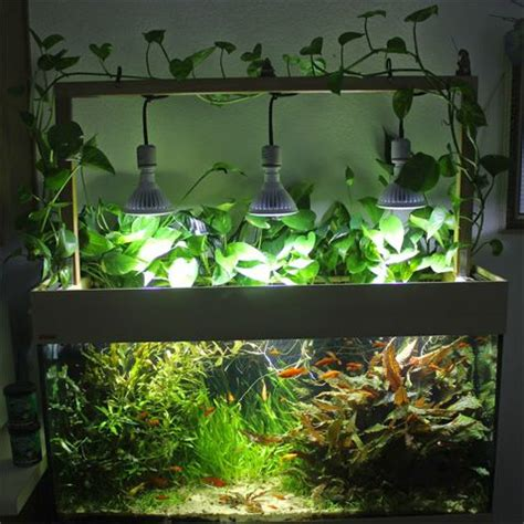 Lu Led Aquarium Diy the 25 best aquarium lighting ideas on