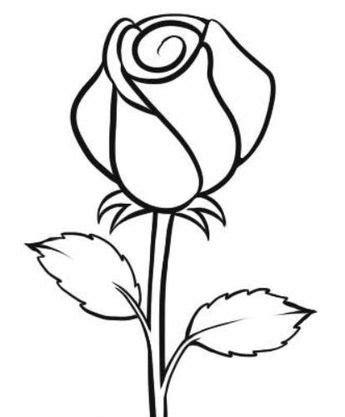 gambar bunga matahari hitam putih  kolase koleksi