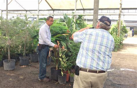 Miami Farmer Mba by Miami Dade County Nursery Grower Named Florida Farmer Of