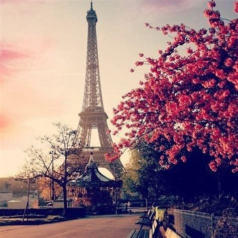 theme tour definition eiffel tower tumblr on we heart it http weheartit com