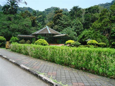 File Penang Botanic Gardens 22 Jpg Botanical Garden Penang
