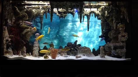 3d aquarium background diy underwater cavern aquarium with 3d background