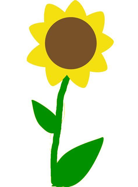 imagenes de flores a color dibujos de flores la belleza se encuentra en la naturaleza