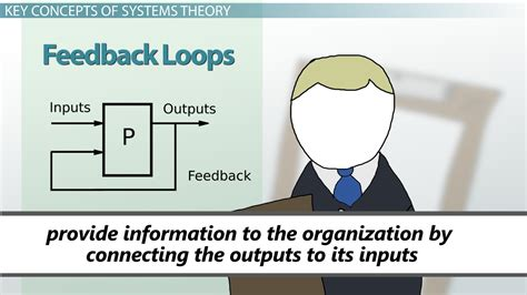 systems approach  management theory concepts video lesson transcript studycom